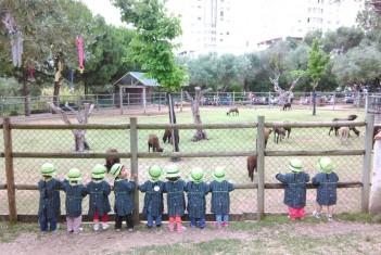 Visita à Quinta Pedagógica dos Olivais